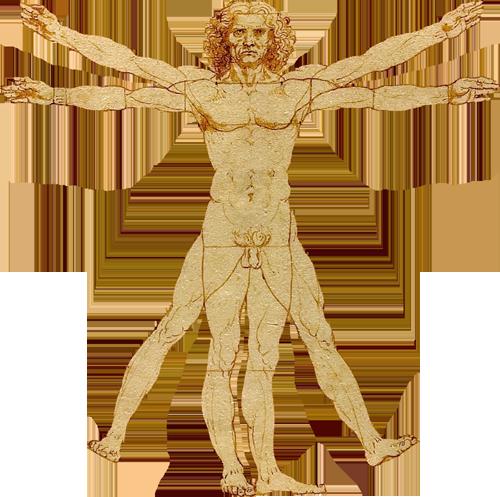 Leonard de Vinci Corps et esprit sain