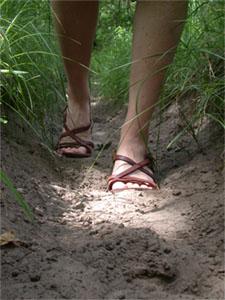 Chemin, une trace laissée par piétinements