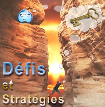 Défis et Stratégies